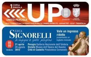 up-signorelli