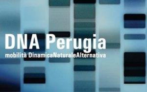 DNA Perugia logo